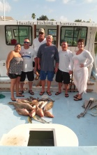 chicke-dolphin-red-grouper-gag-grouper