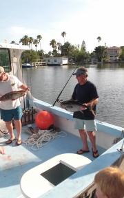 dr-phillips-blackfin-tuna