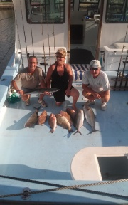kingfish-amberjack-and-red-grouper