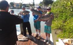 nice-gag-grouper-day